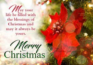 Christmas Greeting and Sayings