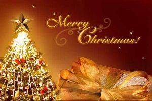 Merry Christmas Whatsapp DP Pics
