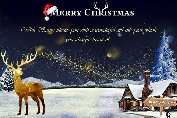 Merry Christmas and New Year 2021 Photos